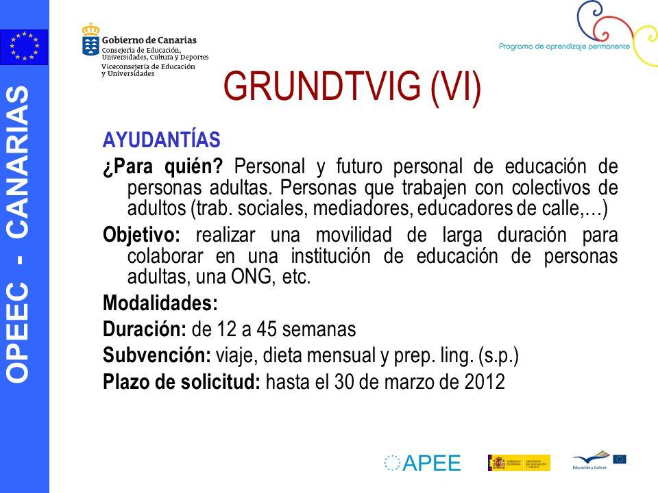 OPEEC - CANARIAS GRUNDTVIG (VI) AYUDANTÍAS ¿Para quién? Personal y futuro personal de educación de personas adultas. Personas que trabajen con colecti