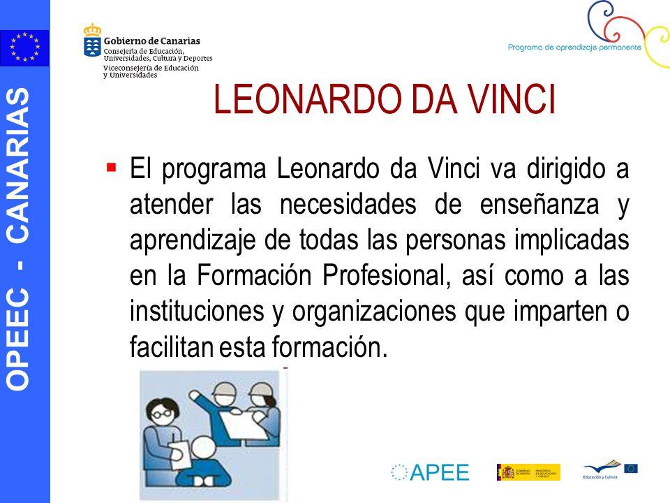 OPEEC - CANARIAS LEONARDO DA VINCI El programa Leonardo da Vinci va dirigido a atender las necesidades de enseñanza y aprendizaje de todas las persona