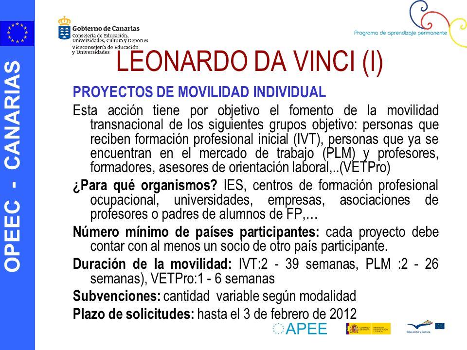 OPEEC - CANARIAS LEONARDO DA VINCI (I) PROYECTOS DE MOVILIDAD INDIVIDUAL Esta acción tiene por objetivo el fomento de la movilidad transnacional de lo