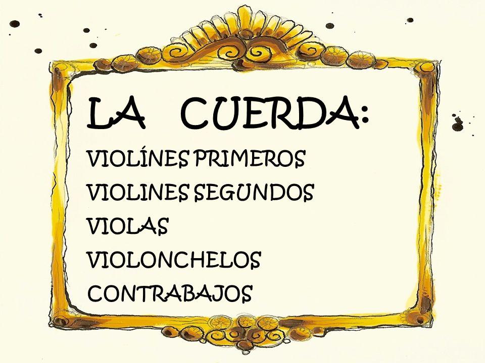 LA CUERDA: VIOLÍNES PRIMEROS VIOLINES SEGUNDOS VIOLAS VIOLONCHELOS CONTRABAJOS
