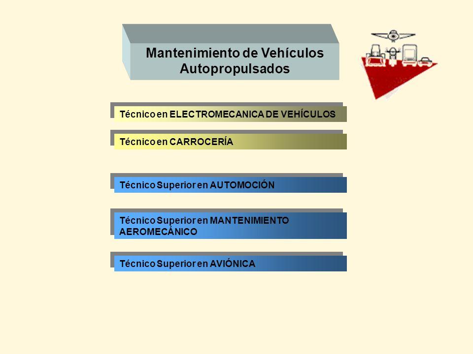 Mantenimiento de Vehículos Autopropulsados Técnico en CARROCERÍA Técnico Superior en AUTOMOCIÓN Técnico en ELECTROMECANICA DE VEHÍCULOS Técnico Superi