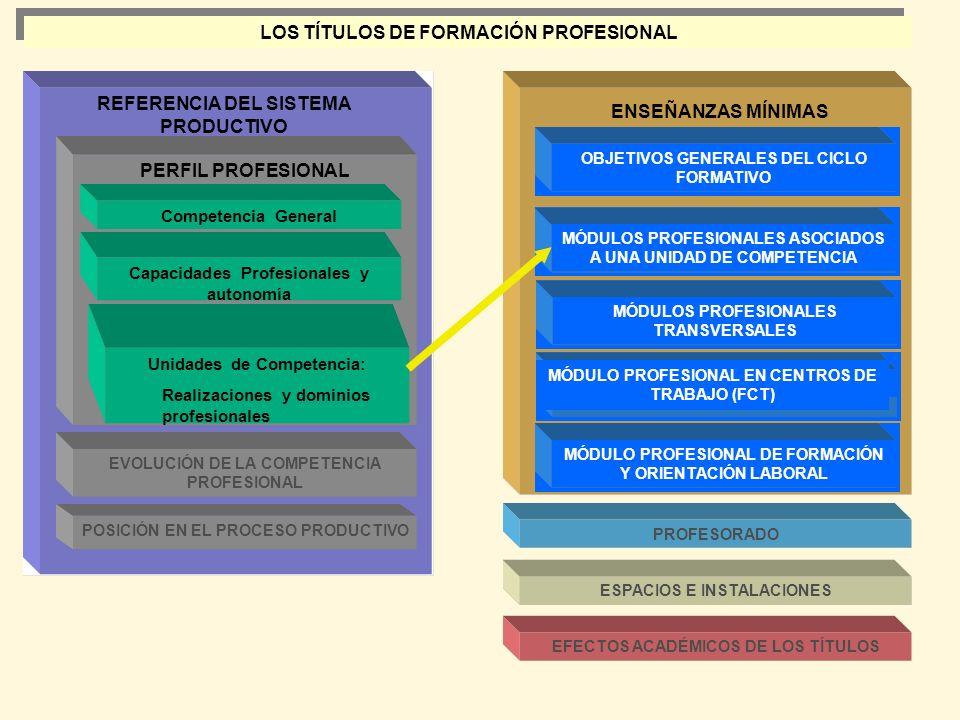 REFERENCIA DEL SISTEMA PRODUCTIVO ENSEÑANZAS MÍNIMAS PERFIL PROFESIONAL Competencia General Capacidades Profesionales y autonomía Unidades de Competen