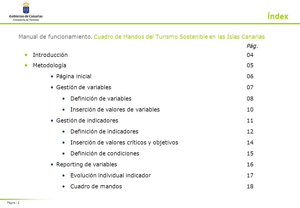 Página | 13 Metodología Gestión de variables: definición de indicadores Los campos de los que se contiene cada indicador son doce.