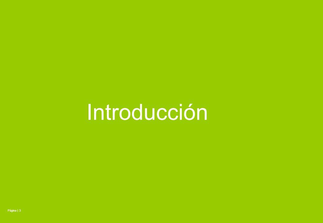 Introducción Página | 3