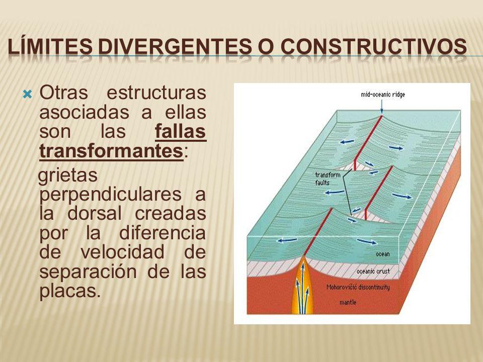 Otras estructuras asociadas a ellas son las fallas transformantes: grietas perpendiculares a la dorsal creadas por la diferencia de velocidad de separ