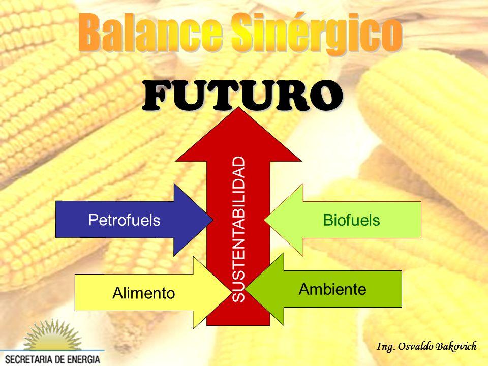 Ing. Osvaldo Bakovich SUSTENTABILIDAD Ambiente P e t r o f u e l s A l i m e n t o Biofuels FUTURO