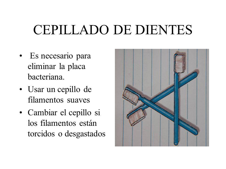 CEPILLADO DE DIENTES Es necesario para eliminar la placa bacteriana. Usar un cepillo de filamentos suaves Cambiar el cepillo si los filamentos están t