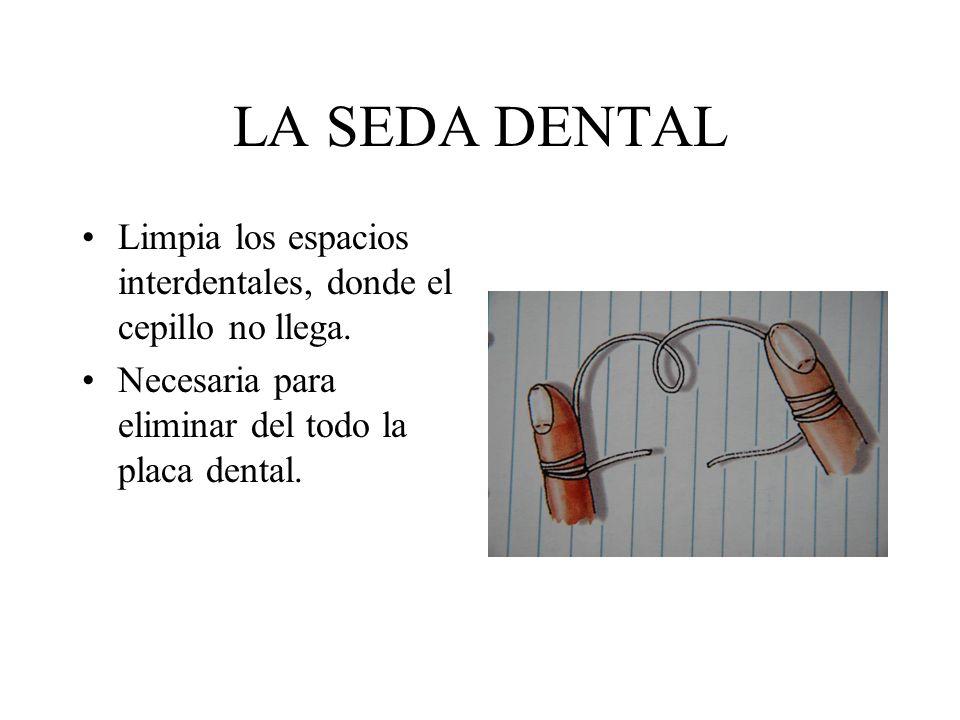 LA SEDA DENTAL Limpia los espacios interdentales, donde el cepillo no llega. Necesaria para eliminar del todo la placa dental.