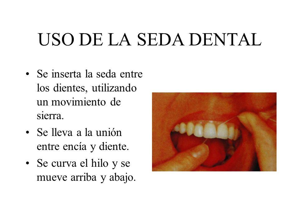 USO DE LA SEDA DENTAL Se inserta la seda entre los dientes, utilizando un movimiento de sierra. Se lleva a la unión entre encía y diente. Se curva el