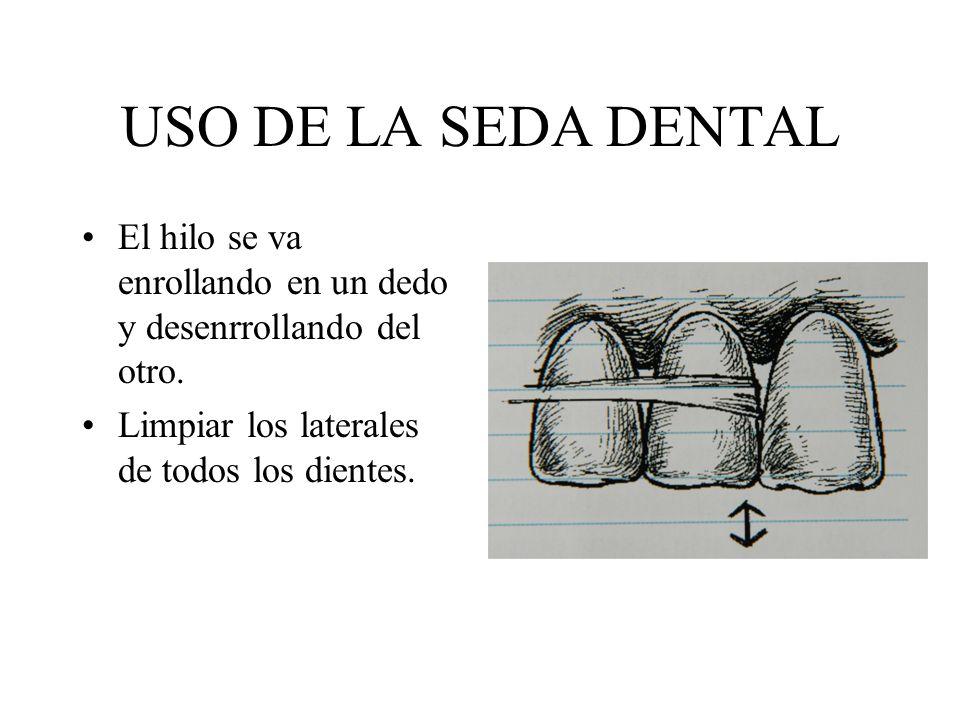 USO DE LA SEDA DENTAL El hilo se va enrollando en un dedo y desenrrollando del otro. Limpiar los laterales de todos los dientes.