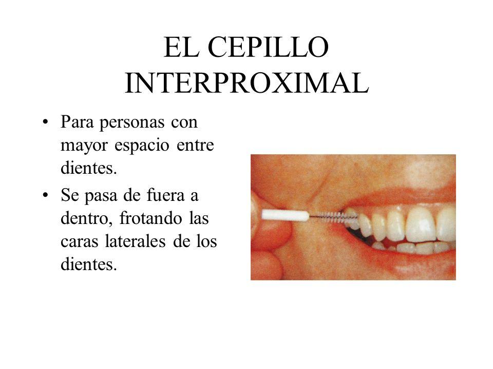 EL CEPILLO INTERPROXIMAL Para personas con mayor espacio entre dientes. Se pasa de fuera a dentro, frotando las caras laterales de los dientes.