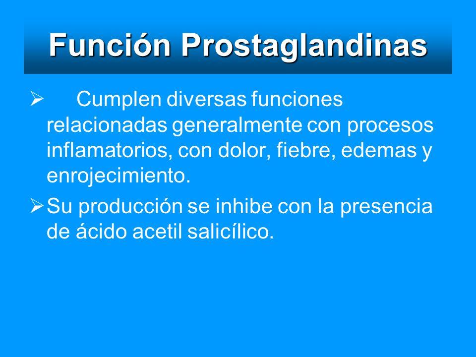 Función Prostaglandinas Cumplen diversas funciones relacionadas generalmente con procesos inflamatorios, con dolor, fiebre, edemas y enrojecimiento. S