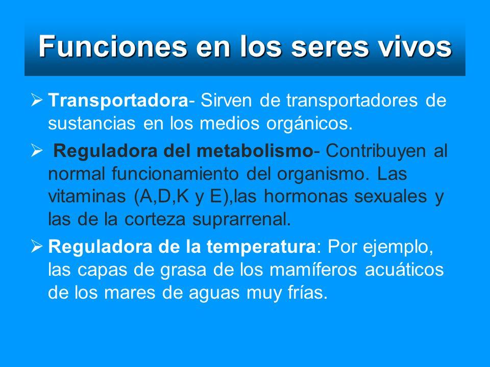Funciones en los seres vivos Transportadora- Sirven de transportadores de sustancias en los medios orgánicos. Reguladora del metabolismo- Contribuyen