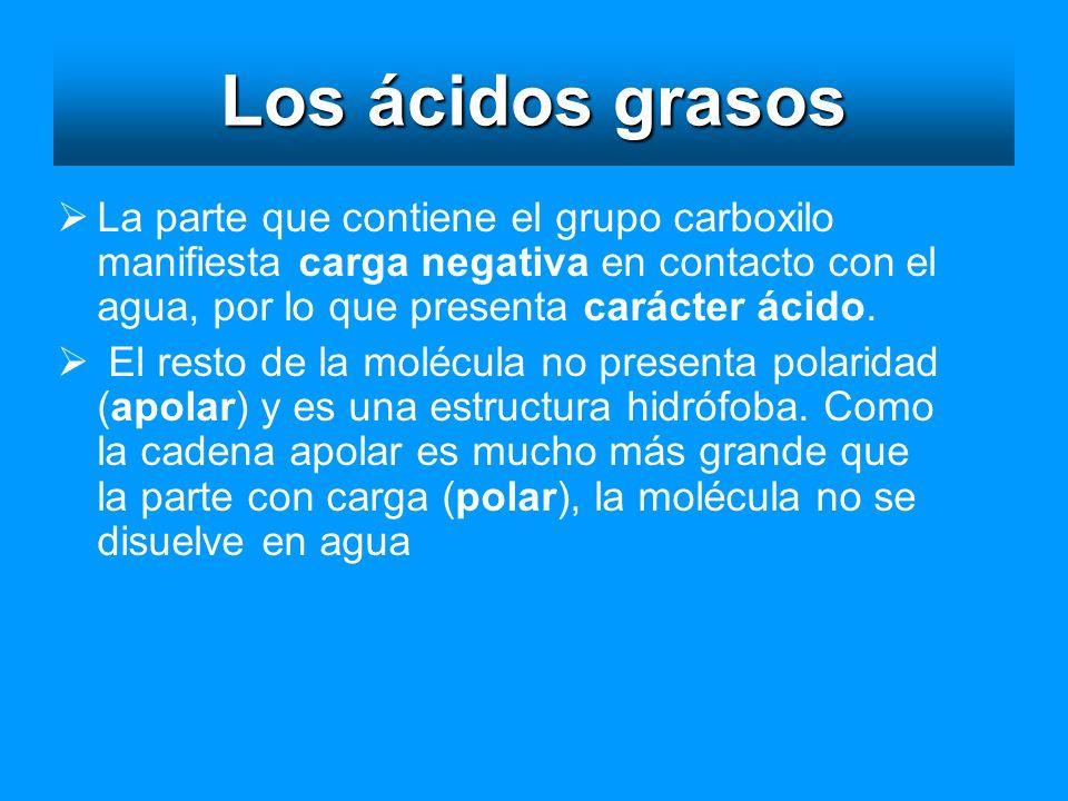 Los ácidos grasos La parte que contiene el grupo carboxilo manifiesta carga negativa en contacto con el agua, por lo que presenta carácter ácido. El r