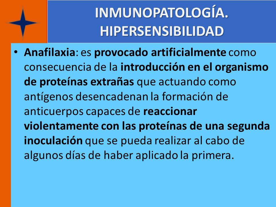 INMUNOPATOLOGÍA. HIPERSENSIBILIDAD Anafilaxia: es provocado artificialmente como consecuencia de la introducción en el organismo de proteínas extrañas