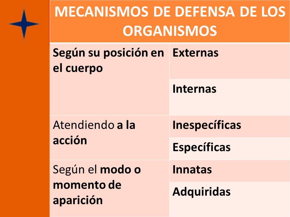 MECANISMOS DE DEFENSA DE LOS ORGANISMOS Según su posición en el cuerpo Externas Internas Atendiendo a la acción Inespecíficas Específicas Según el mod
