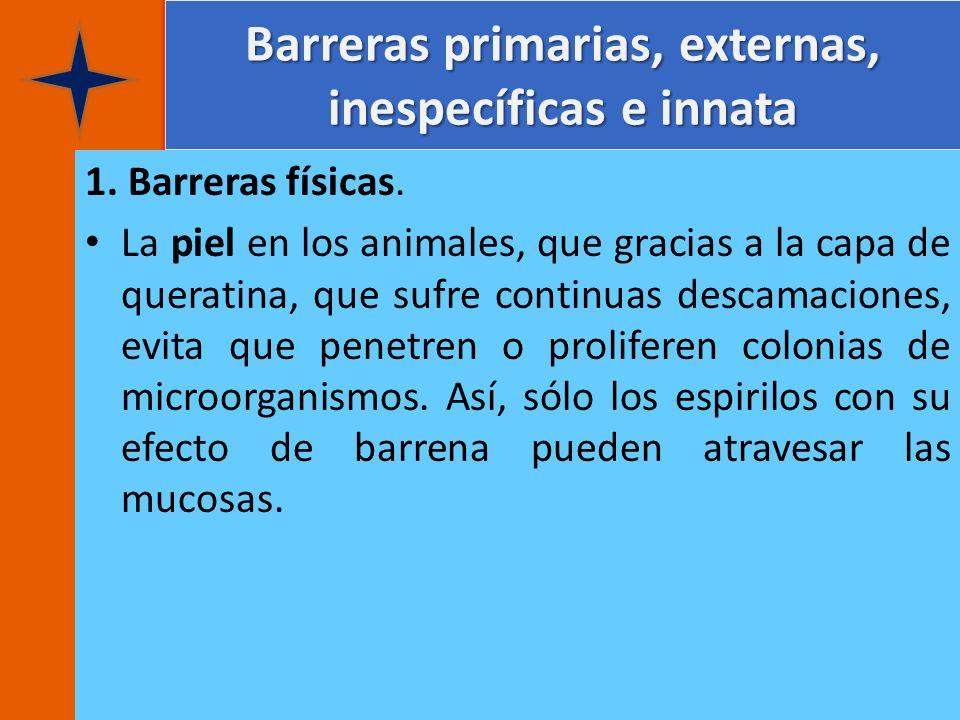 Barreras primarias, externas, inespecíficas e innata 1. Barreras físicas. La piel en los animales, que gracias a la capa de queratina, que sufre conti