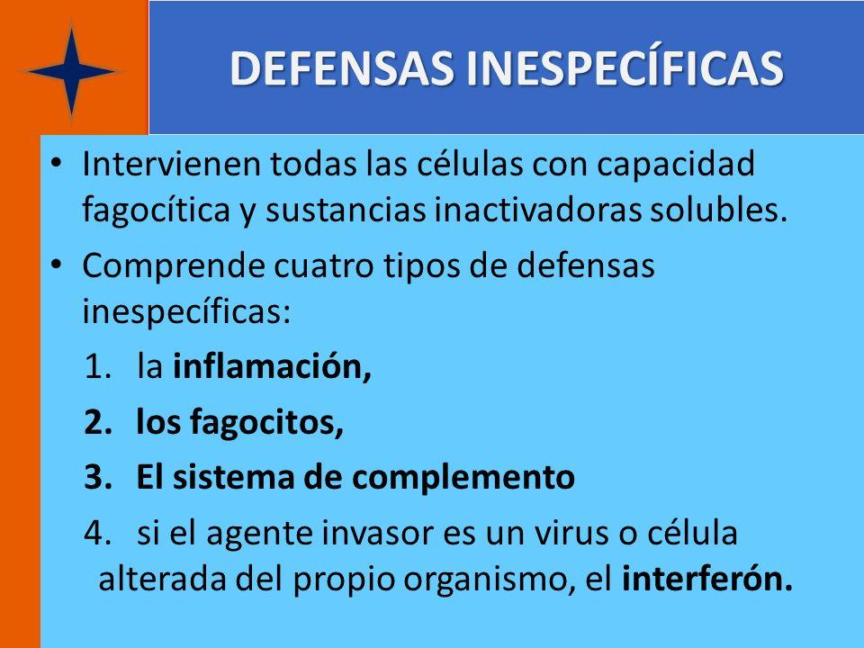 DEFENSAS INESPECÍFICAS Intervienen todas las células con capacidad fagocítica y sustancias inactivadoras solubles. Comprende cuatro tipos de defensas