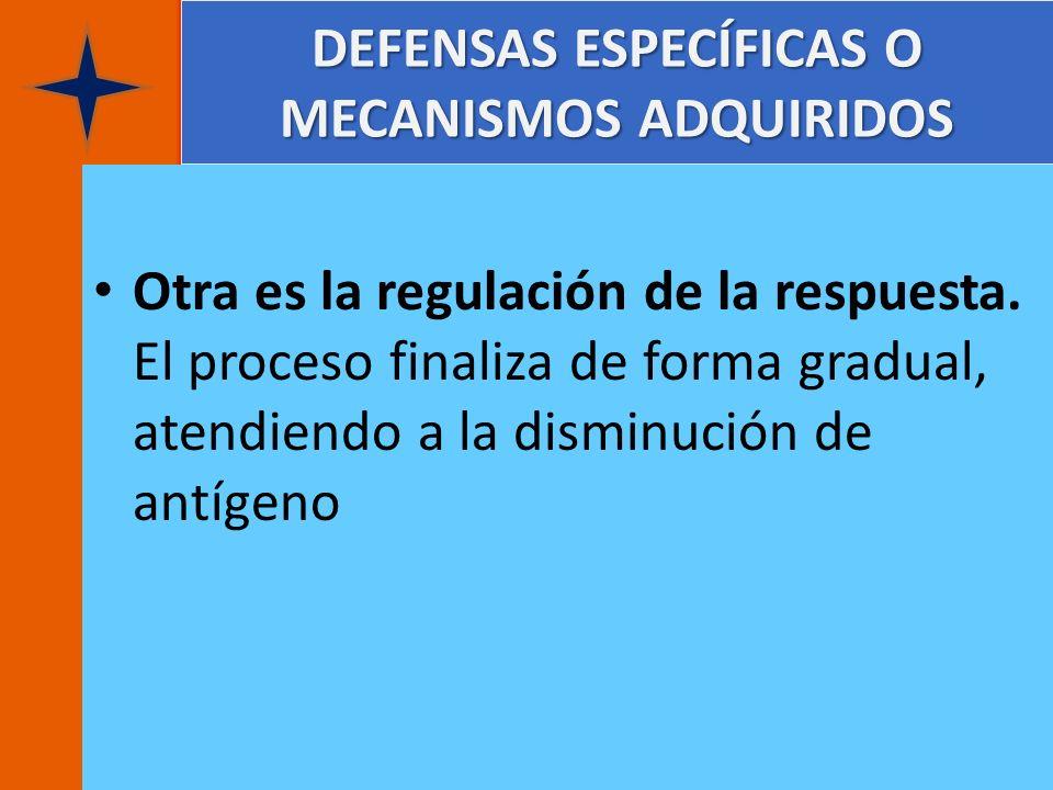 DEFENSAS ESPECÍFICAS O MECANISMOS ADQUIRIDOS Otra es la regulación de la respuesta. El proceso finaliza de forma gradual, atendiendo a la disminución