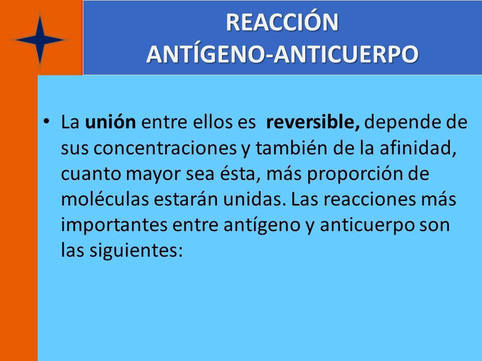 REACCIÓN ANTÍGENO-ANTICUERPO La unión entre ellos es reversible, depende de sus concentraciones y también de la afinidad, cuanto mayor sea ésta, más p