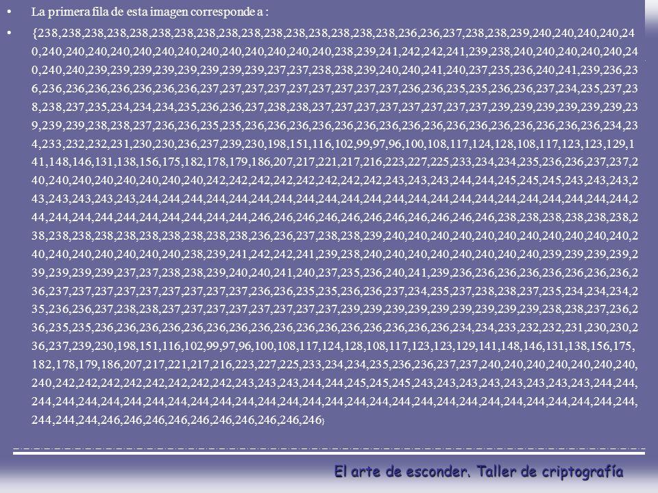 El arte de esconder. Taller de criptografía La primera fila de esta imagen corresponde a : {238,238,238,238,238,238,238,238,238,238,238,238,238,238,23