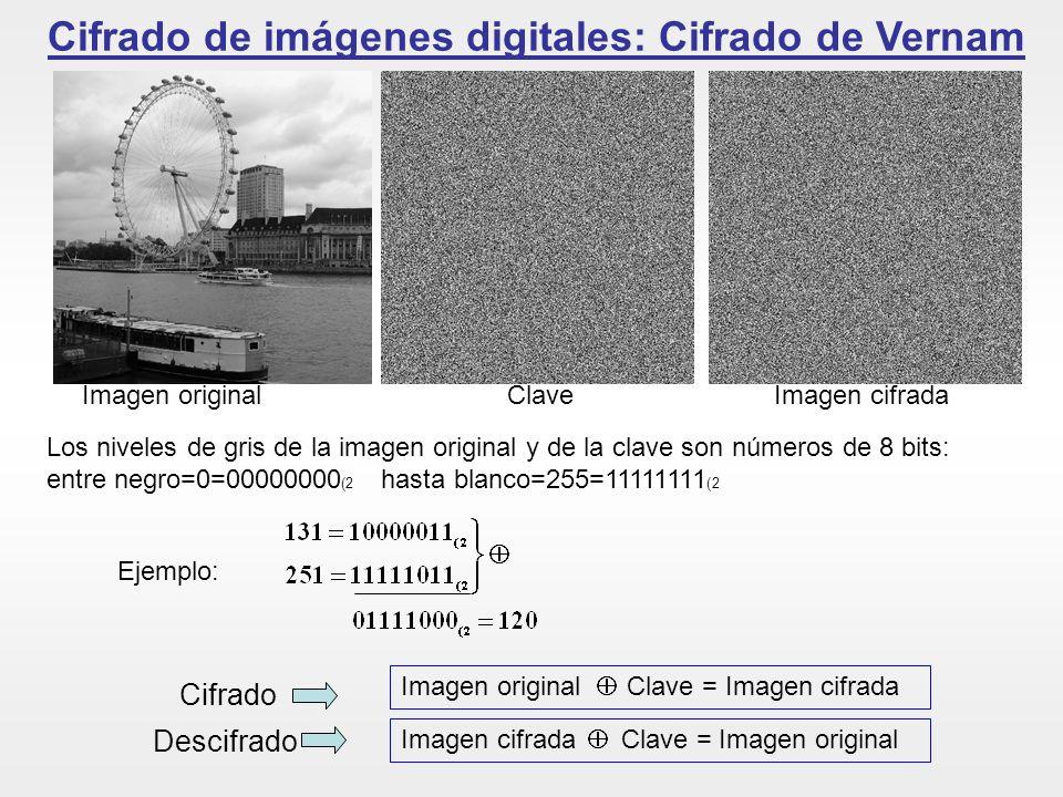 Cifrado de imágenes digitales: Cifrado de Vernam Imagen original Clave Imagen cifrada Imagen original Clave = Imagen cifrada Imagen cifrada Clave = Im