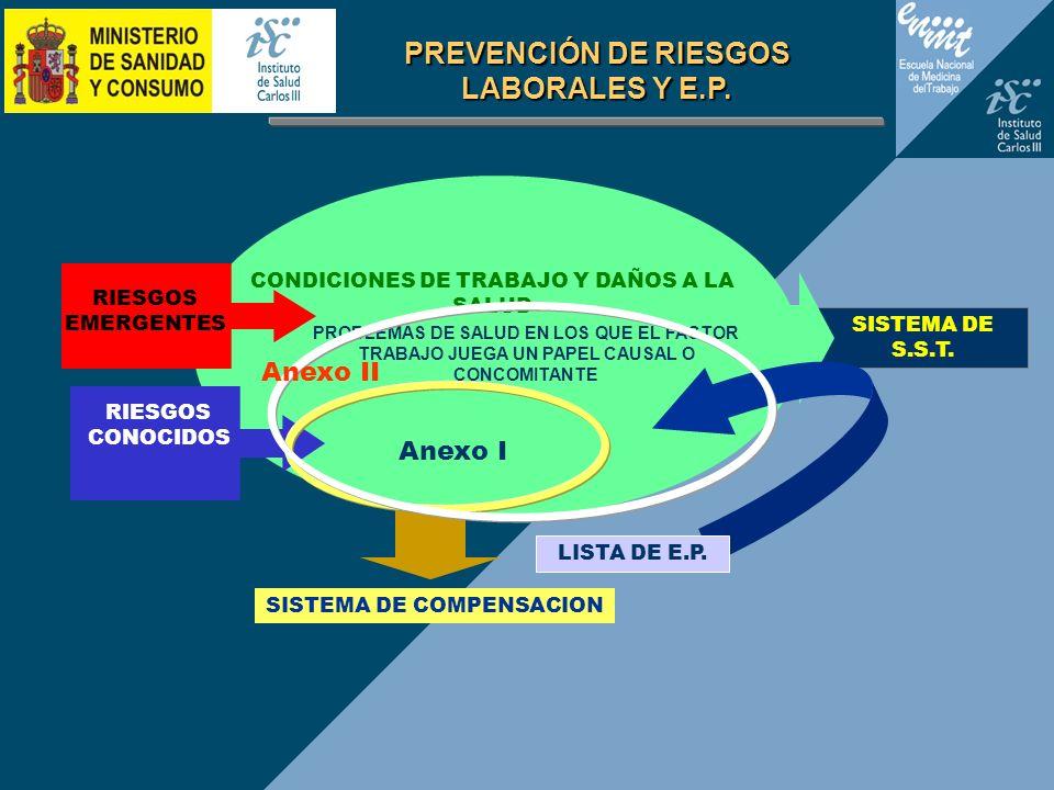 Anexo I SISTEMA DE S.S.T. SISTEMA DE COMPENSACION LISTA DE E.P. CONDICIONES DE TRABAJO Y DAÑOS A LA SALUD RIESGOS CONOCIDOS RIESGOS EMERGENTES PROBLEM
