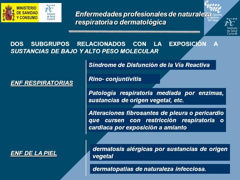 Enfermedades profesionales de naturaleza respiratoria o dermatológica DOS SUBGRUPOS RELACIONADOS CON LA EXPOSICIÓN A SUSTANCIAS DE BAJO Y ALTO PESO MO