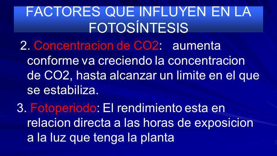 FACTORES QUE INFLUYEN EN LA FOTOSÍNTESIS 1. 1. Intensidad luminosa: La actividad fotosintetica aumenta con la intensidad luminosa hasta alcanzar un li