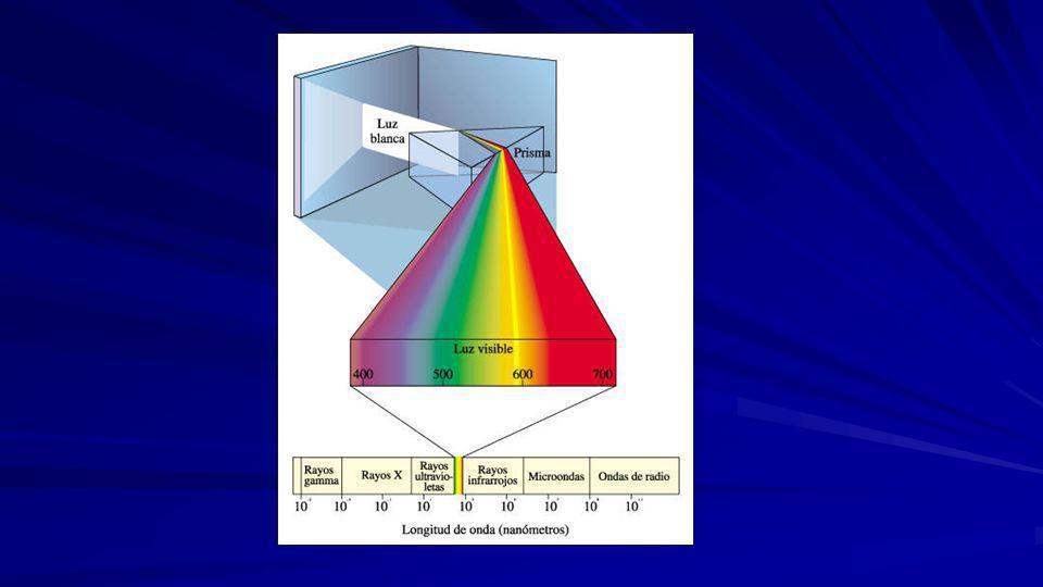 7. Color de la luz: Si se ilumina la planta con luz roja, con longitud de onda superior a 680nm, no actua el fotosistema II, solo se estimula el fotos