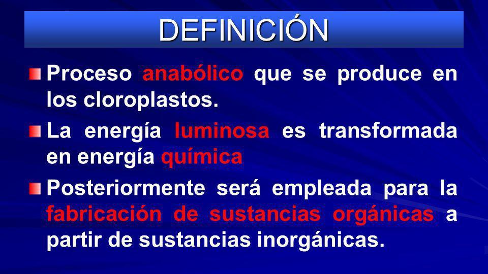 DEFINICIÓN Proceso anabólico que se produce en los cloroplastos.