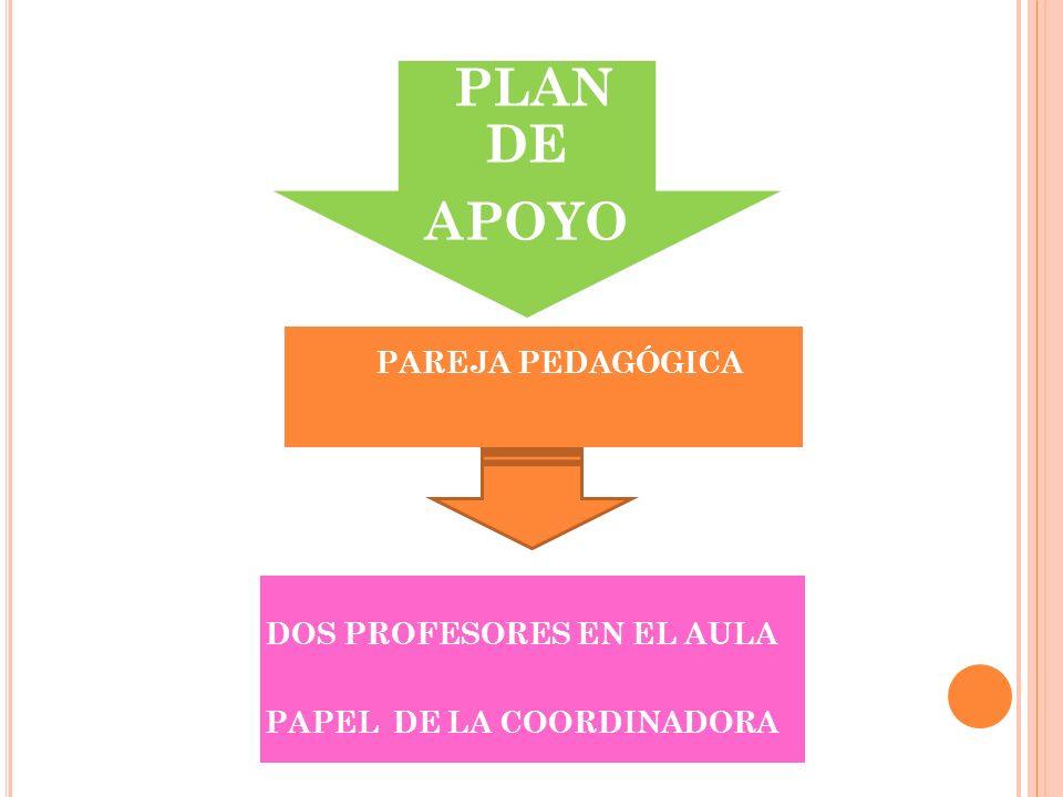 PLAN DE APOYO PAREJA PEDAGÓGICA DOS PROFESORES EN EL AULA PAPEL DE LA COORDINADORA