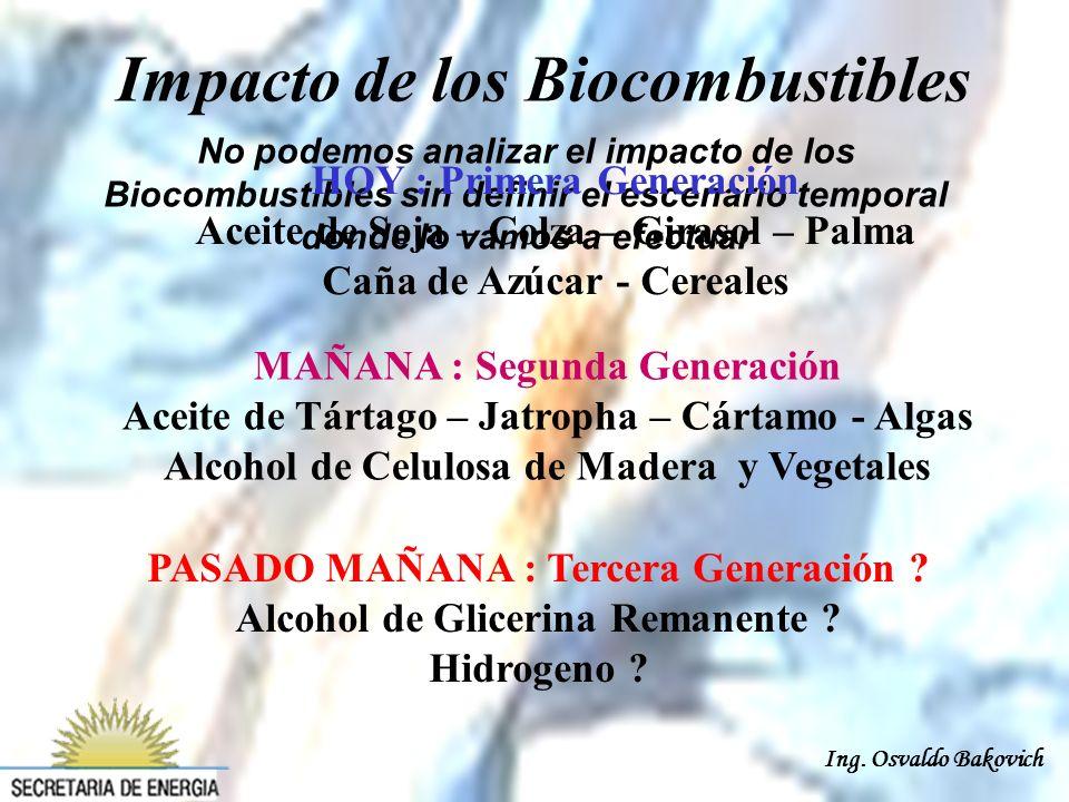 Ing. Osvaldo Bakovich Impacto de los Biocombustibles No podemos analizar el impacto de los Biocombustibles sin definir el escenario temporal donde lo