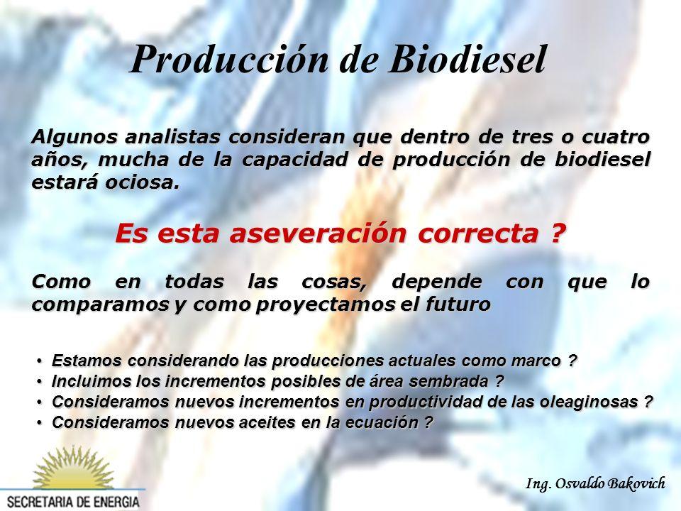 Ing. Osvaldo Bakovich Algunos analistas consideran que dentro de tres o cuatro años, mucha de la capacidad de producción de biodiesel estará ociosa. E