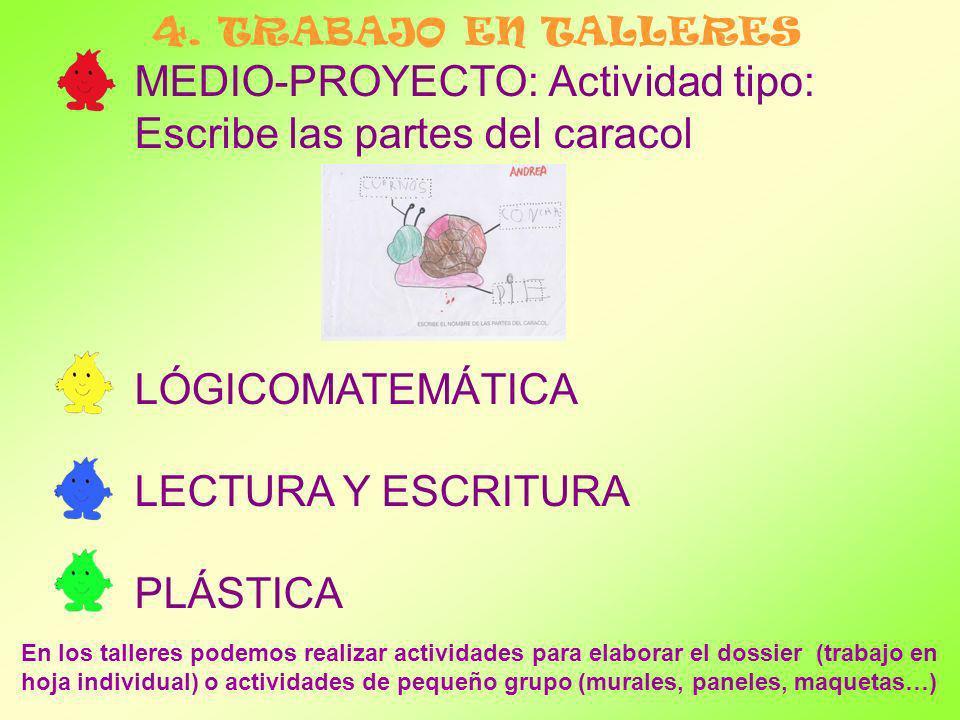 MEDIO-PROYECTO: Actividad tipo: Escribe las partes del caracol LÓGICOMATEMÁTICA LECTURA Y ESCRITURA PLÁSTICA 4. TRABAJO EN TALLERES En los talleres po