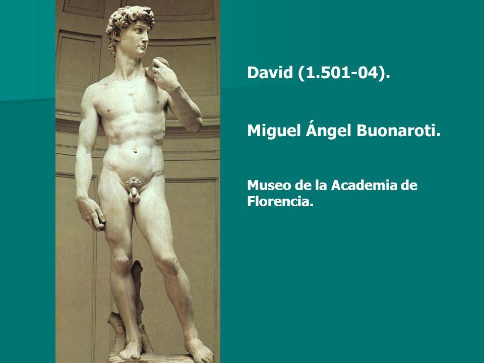 David (1.501-04). Miguel Ángel Buonaroti. Museo de la Academia de Florencia.