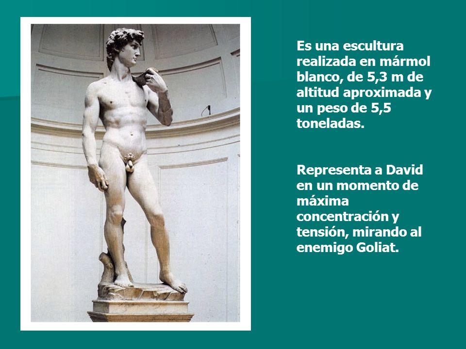 Es una escultura realizada en mármol blanco, de 5,3 m de altitud aproximada y un peso de 5,5 toneladas. Representa a David en un momento de máxima con