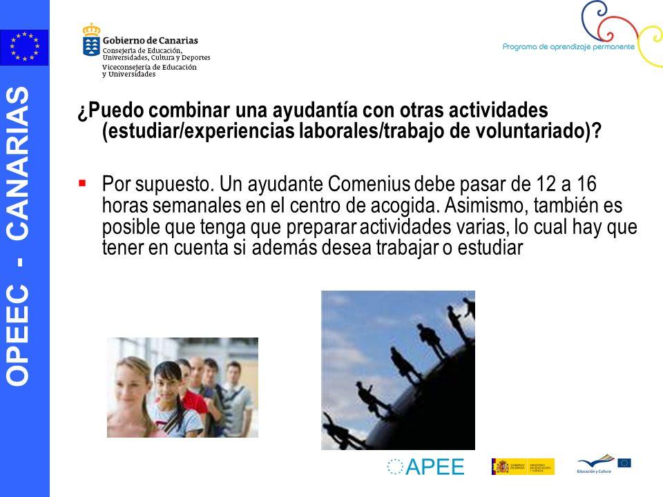 OPEEC - CANARIAS ¿Puedo combinar una ayudantía con otras actividades (estudiar/experiencias laborales/trabajo de voluntariado).