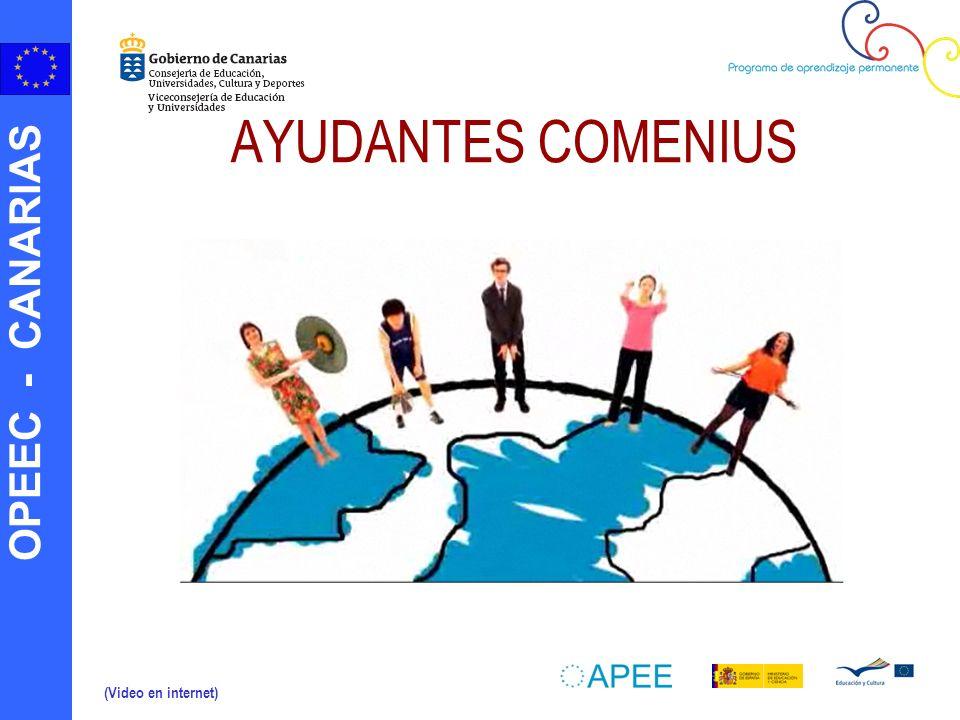 OPEEC - CANARIAS ¿Qué funciones desempeñan los Ayudantes Comenius.