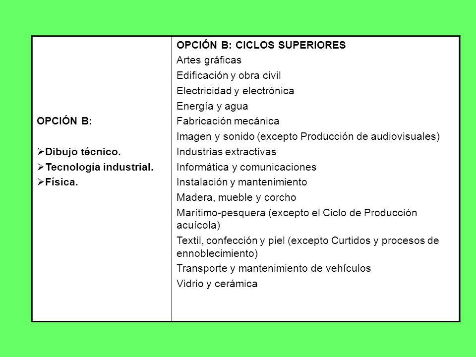 OPCIÓN B: Dibujo técnico. Tecnología industrial. Física. OPCIÓN B: CICLOS SUPERIORES Artes gráficas Edificación y obra civil Electricidad y electrónic