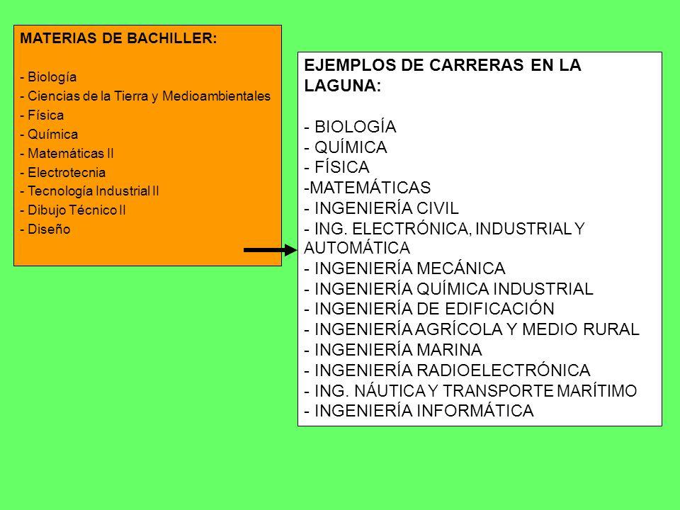 EJEMPLOS DE CARRERAS EN LA LAGUNA: - BIOLOGÍA - QUÍMICA - FÍSICA -MATEMÁTICAS - INGENIERÍA CIVIL - ING. ELECTRÓNICA, INDUSTRIAL Y AUTOMÁTICA - INGENIE