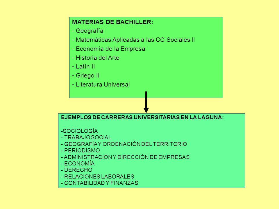 MATERIAS DE BACHILLER: - Geografía - Matemáticas Aplicadas a las CC Sociales II - Economía de la Empresa - Historia del Arte - Latín II - Griego II -