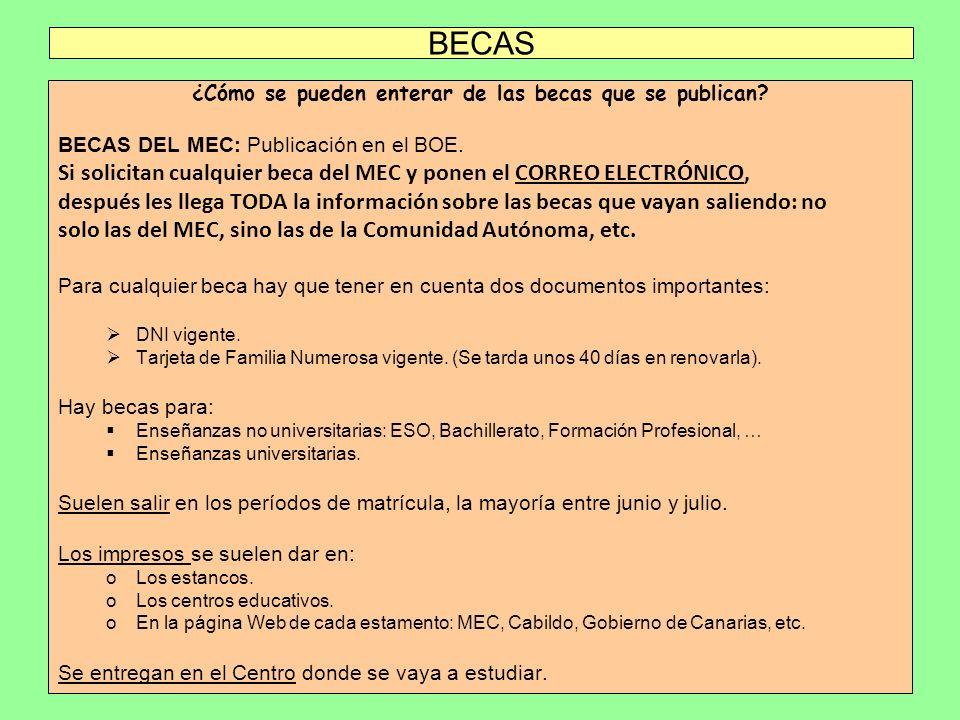 BECAS ¿Cómo se pueden enterar de las becas que se publican? BECAS DEL MEC: Publicación en el BOE. Si solicitan cualquier beca del MEC y ponen el CORRE
