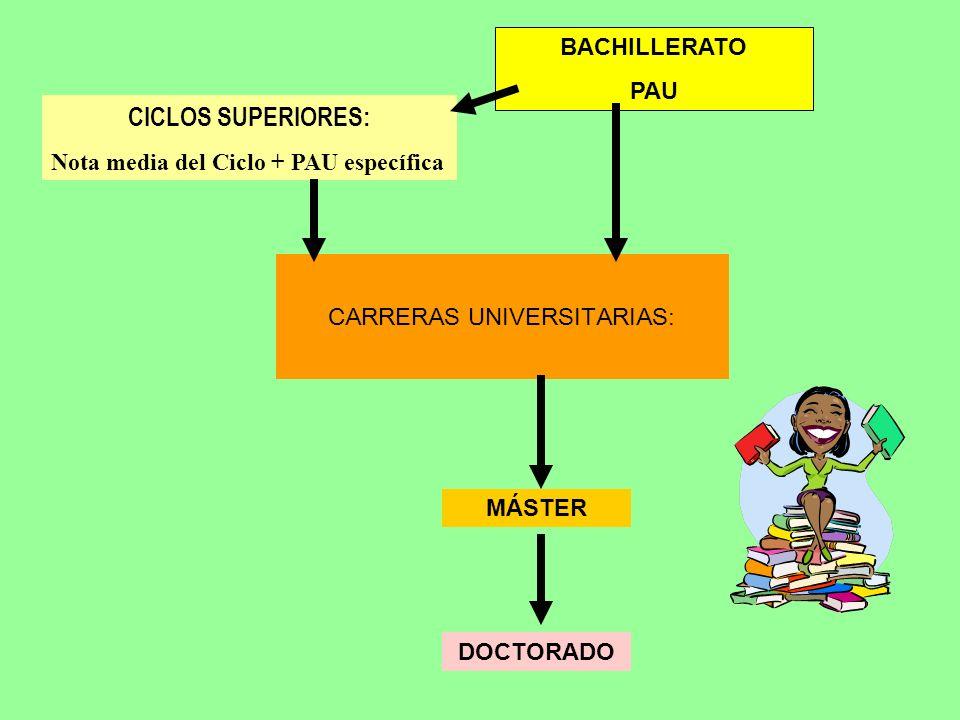 MÁSTER CARRERAS UNIVERSITARIAS: BACHILLERATO PAU CICLOS SUPERIORES: Nota media del Ciclo + PAU específica DOCTORADO