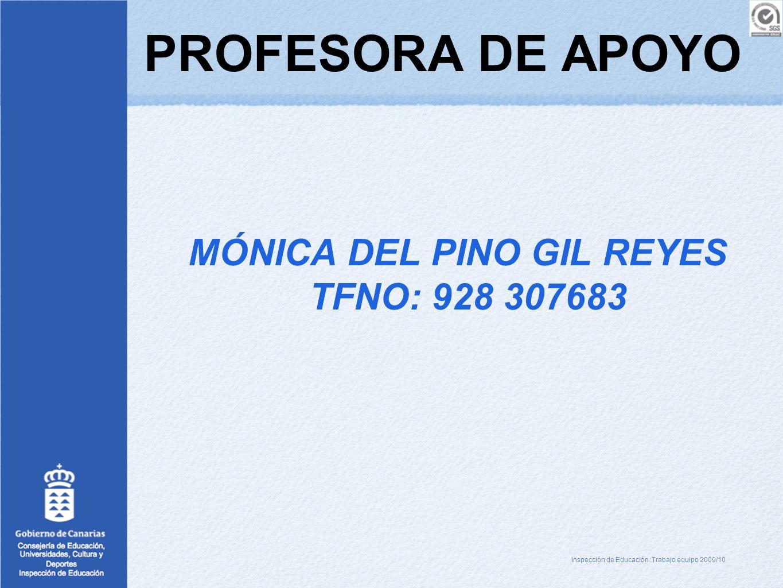 PROFESORA DE APOYO MÓNICA DEL PINO GIL REYES TFNO: 928 307683 Inspección de Educación :Trabajo equipo 2009/10