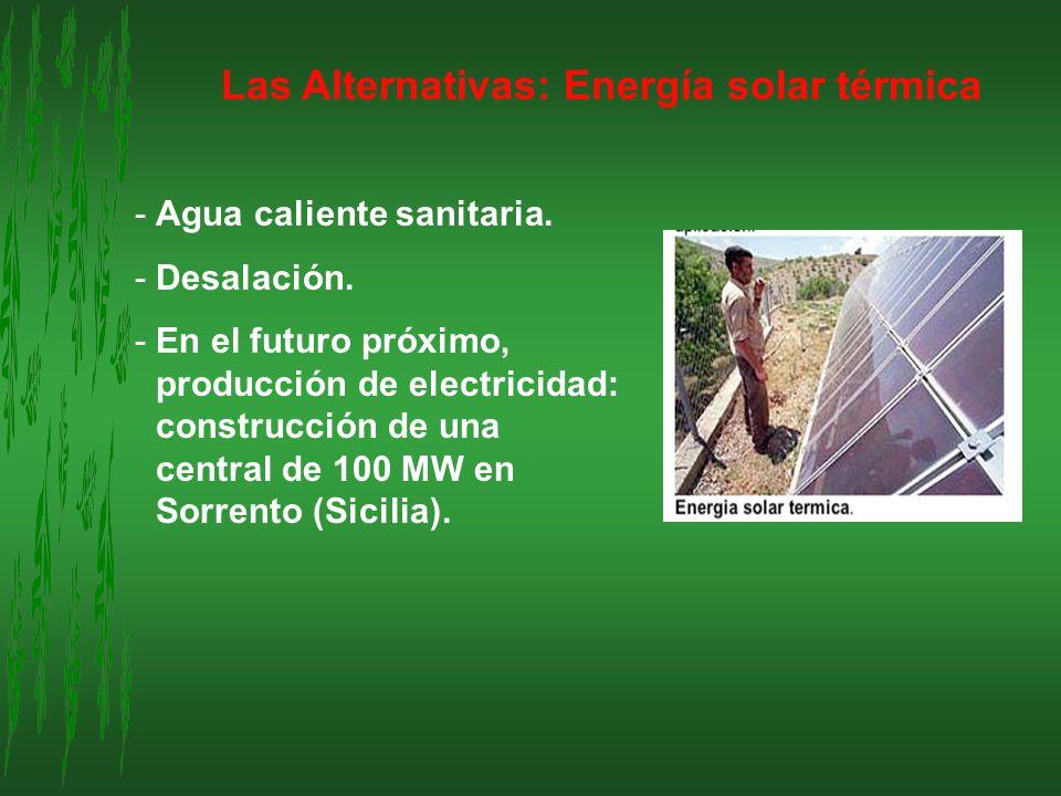 Las Alternativas: Energía solar térmica -Agua caliente sanitaria. -Desalación. -En el futuro próximo, producción de electricidad: construcción de una