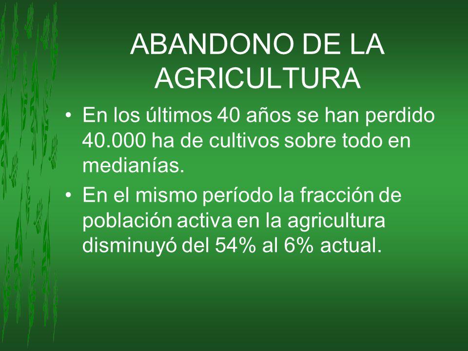 ABANDONO DE LA AGRICULTURA En los últimos 40 años se han perdido 40.000 ha de cultivos sobre todo en medianías. En el mismo período la fracción de pob