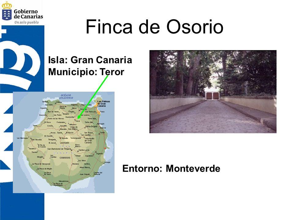 Un solo pueblo Finca de Osorio Isla: Gran Canaria Municipio: Teror Entorno: Monteverde