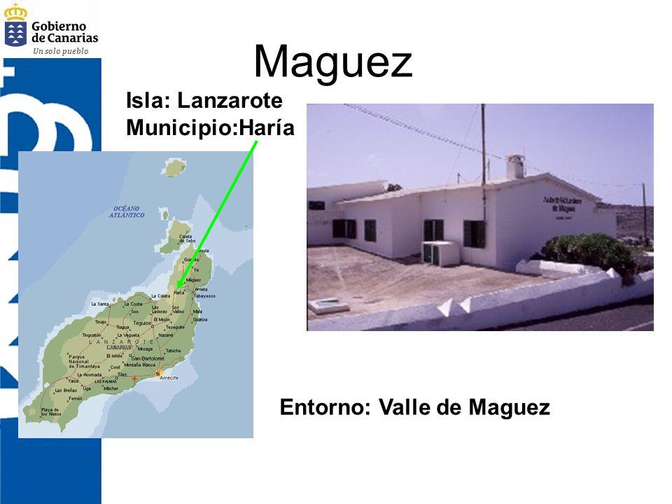Un solo pueblo Maguez Isla: Lanzarote Municipio:Haría Entorno: Valle de Maguez