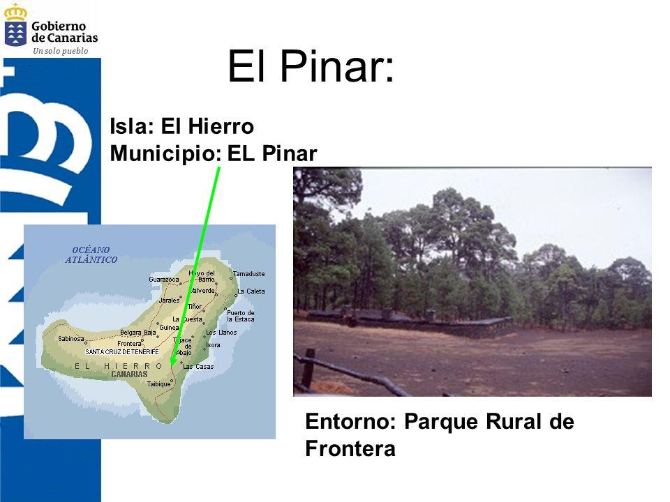 Un solo pueblo El Pinar: Isla: El Hierro Municipio: EL Pinar Entorno: Parque Rural de Frontera